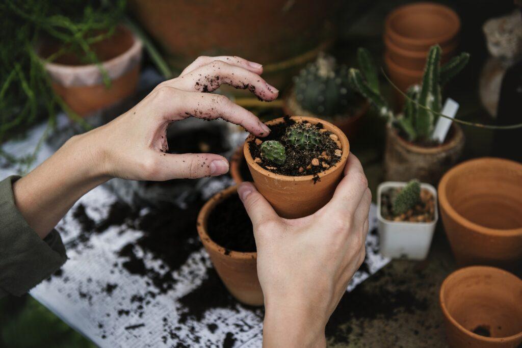 person putting soil into plant pot