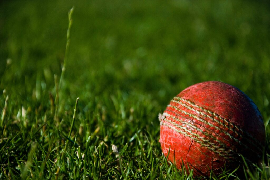 cricket ball on grassy pitch